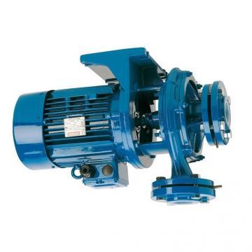 Haldex Idraulici 010306 1300635 Pompa Idraulica