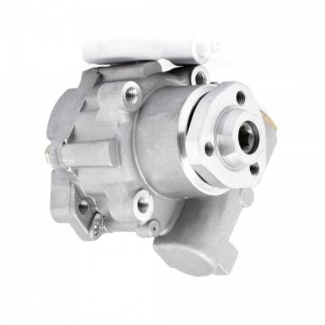 Timing Chain Kit for Nissan:ALMERA II 2,PRIMERA,X-TRAIL 13028-AD212 13028-AD202