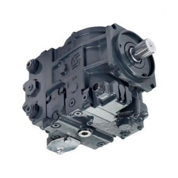 Vickers VVA20FP-CDWW21 Idraulico Vane Pompa Thru Drive 9 Gpm 19 cm3 / R 1450 Psi