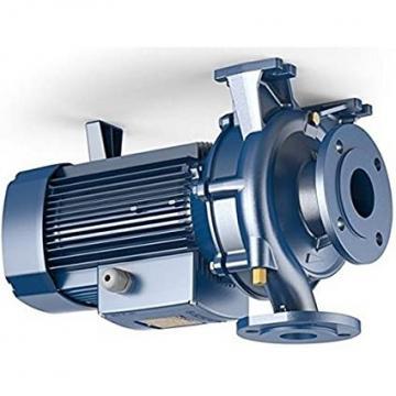 Pompa centrifuga flangiata NSCE40-160/30 4Hp Elettropompa con flange Lowara