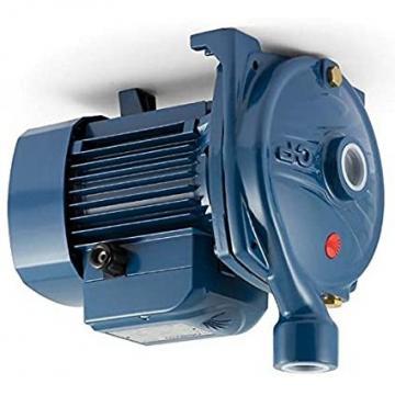 Lowara eHM Pompa Centrifuga Multistadio 10HM02P11T 1,33kW 1,78Hp 3x230/400 50Hz