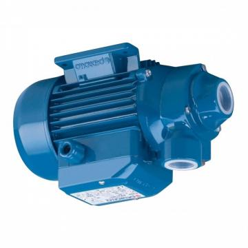 Lowara eHM Pompa Centrifuga Multistadio 10HM06P30T 1,23kW 1,65Hp 3x230/400 50Hz