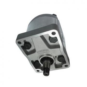 Fiat Trattore Pompa Idraulica Volume 19 Ccm / OEM Nr 5129493, C42X