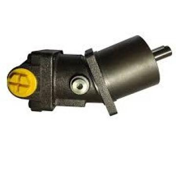 Idraulico Due Pompa