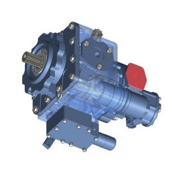 Hydromeca PV2V3-31/12R1MC63A1 Pompa Idraulica