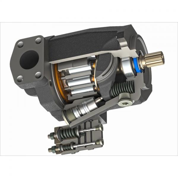 Motore elettrico FIMET asincrono trifase con pompa Rexroth PVV2-1x/040RA15UMB