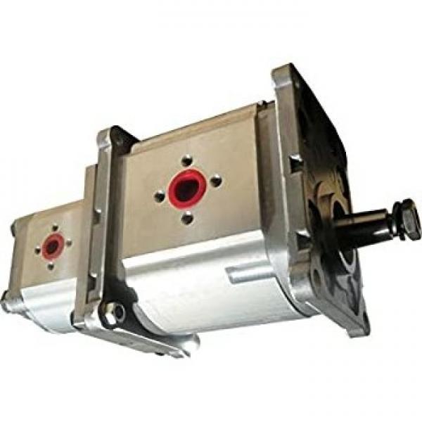 Orsta C40-2 Pompa Idraulica Doppia-Idraulica Tgl 10859 Idraulica-Pompa