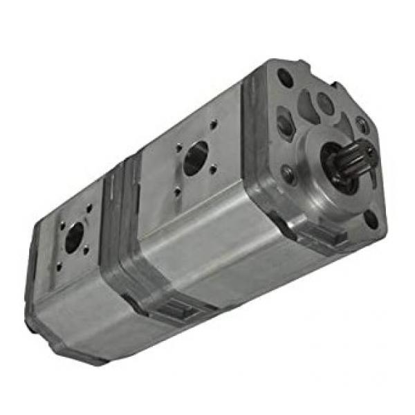 ACCIAIO Inox Doppio ictus Handpump cilindro semplice effetto rilascio handknob B