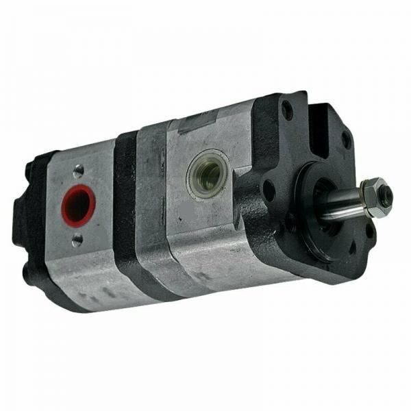 Flowfit Idraulico Della Frizione & Pompa elettromagnetica 12V 10 daNm 12 L/MIN ZZ000444