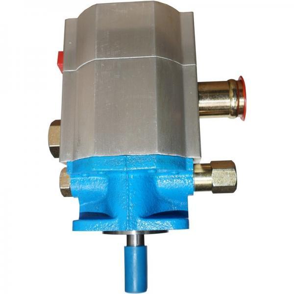 Orsta C40-3 R Pompa Idraulica Doppia-Idraulica Tgl 10859 Idraulica-Pompa