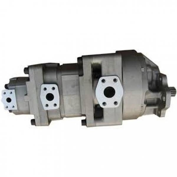 Bucher Pompa Idraulica Typ. QX22-006/22-006R