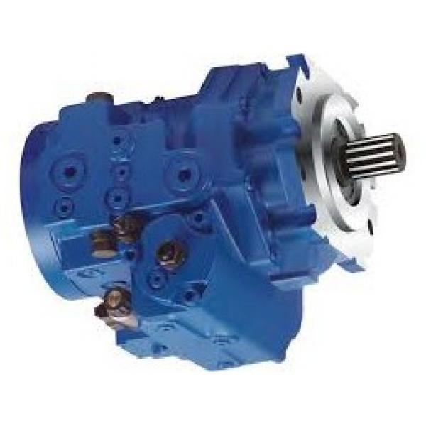 Dynamatic C17.0L39375136 Pompa Idraulica ( S #33-2E )