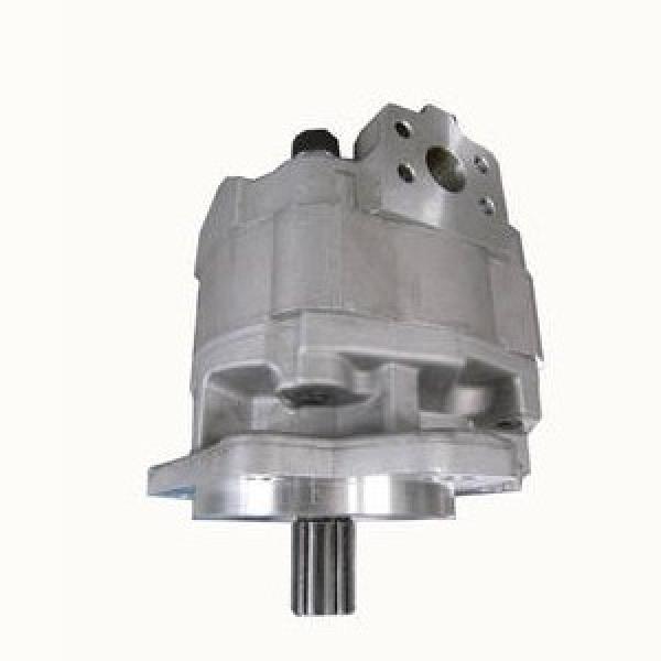 TX11234, 5129486, 8282886, 5169039 Lungo/Fiat/Ford/CASE Trattore POMPA IDRAULICA