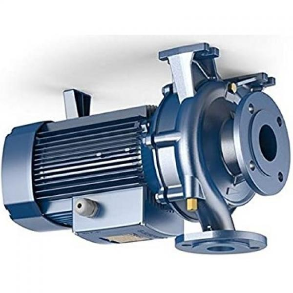 Lowara eHM Pompa Centrifuga Multistadio 3HM02P03T 0,44kW 0,59Hp 3x230/400 50Hz