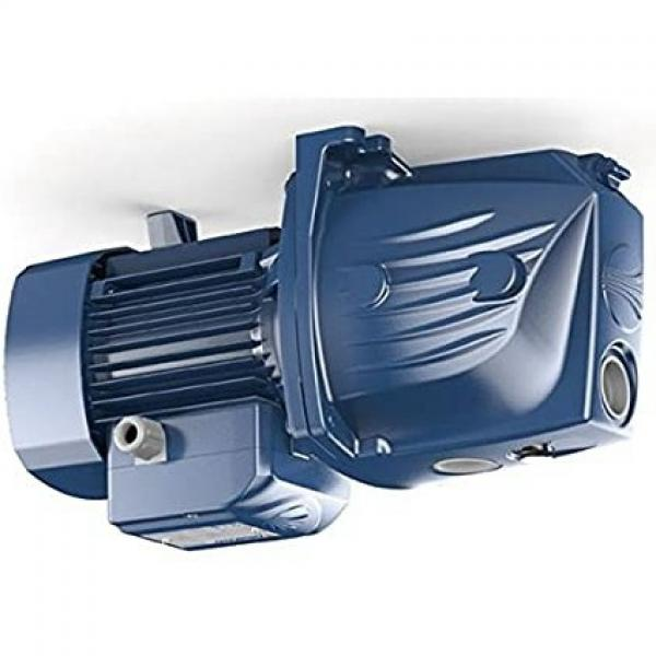Pompa centrifuga flangiata NSCE50-125/30 4Hp Elettropompa con flange Lowara