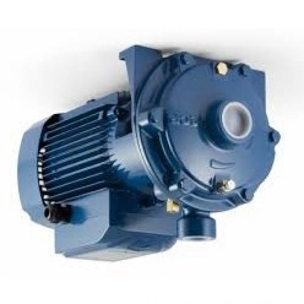 Pompa centrifuga flangiata NSCE32-200/30 4Hp Elettropompa con flange Lowara
