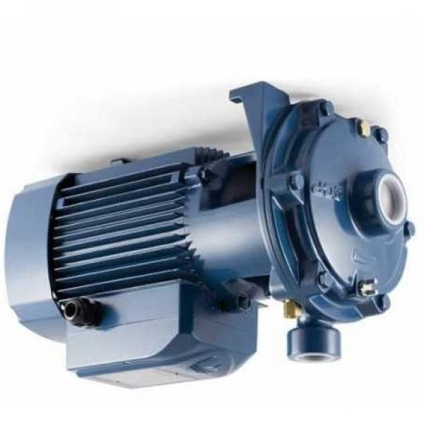 Lowara eHM Pompa Centrifuga Multistadio 10HM04P22M 2,94kW 3,94Hp 1x220-240 50Hz
