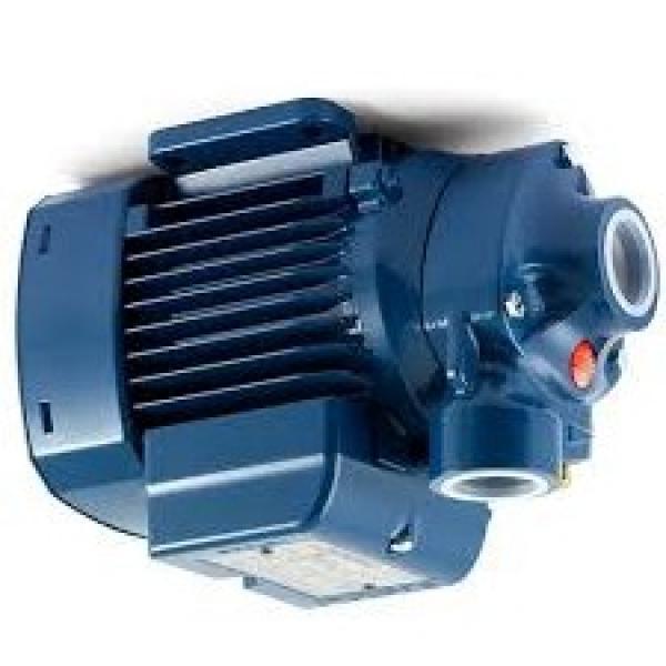 Pompa centrifuga flangiata NSCE40-160/40 5,5Hp Elettropompa con flange Lowara
