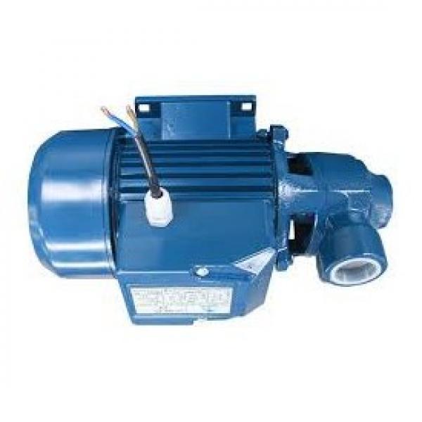 Lowara eHM Pompa Centrifuga Multistadio 3HM04P05M 0,77kW 1,03Hp 1x220-240 50Hz