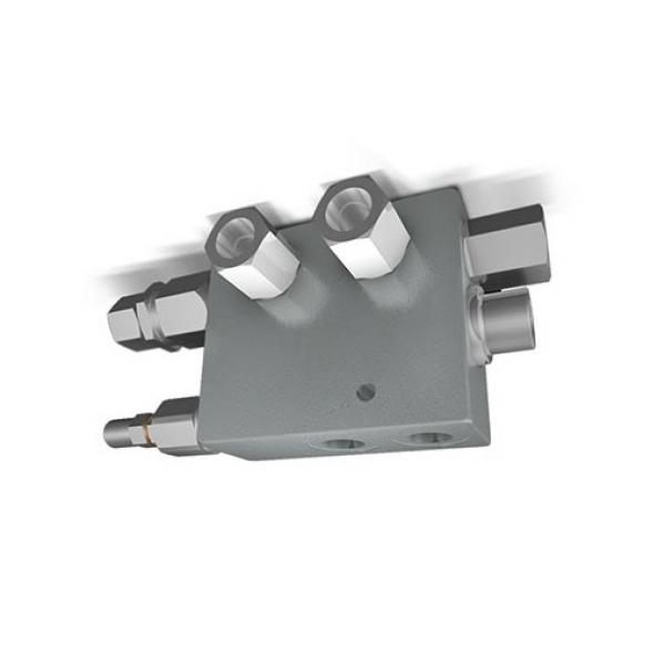 "PermaCast PV-20 2"" MPT Bronzo Valvola idrostatica"